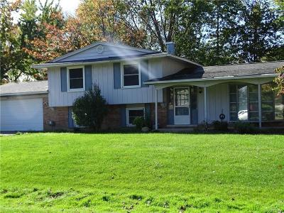 West Bloomfield Single Family Home For Sale: 6600 Heather Heath