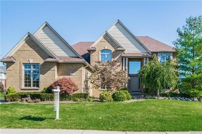 Rochester Hills Single Family Home For Sale: 1329 Clear Creek Dr