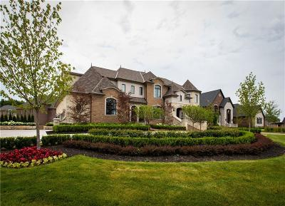 Bloomfield Hills Single Family Home For Sale: 502 Chase Ln