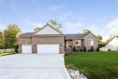 Farmington Hills Single Family Home For Sale: 21143 Robinson St