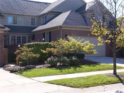Troy Condo/Townhouse For Sale: 241 Harrington Dr