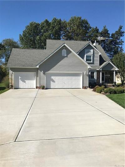 Lapeer Single Family Home For Sale: 109 Pineview Dr