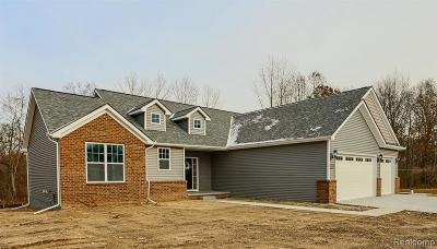 Northville Single Family Home For Sale: 22657 Novi Rd