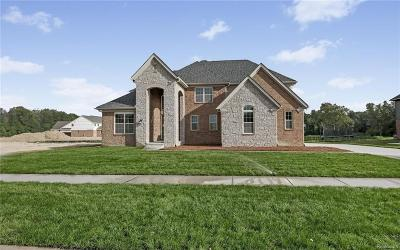 Northville Single Family Home For Sale: 22884 Cyprus Dr