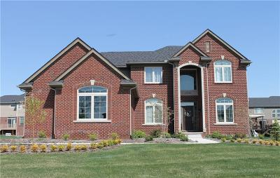 Northville Single Family Home For Sale: 22920 Cyprus Dr