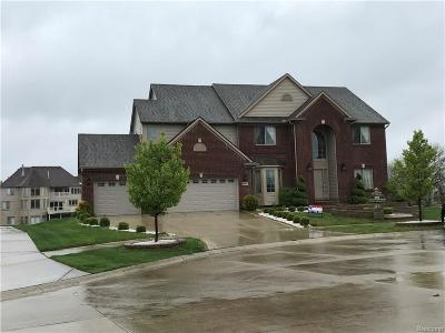 Shelby Twp Single Family Home For Sale: 4060 W Point Crt