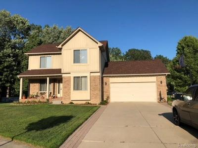 Chesterfield Single Family Home For Sale: 29947 Sugar Creek Court