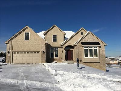 Auburn Hills Single Family Home For Sale: 4489 Cedarhill Crt