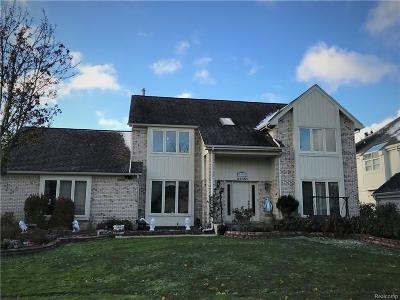 Farmington Hills Single Family Home For Sale: 39151 Horton Dr