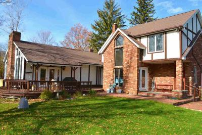 Lapeer Single Family Home For Sale: 4679 Hegel