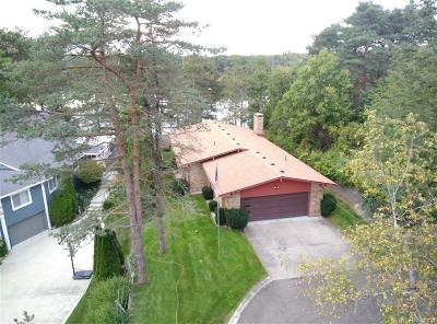 Lake Orion Single Family Home For Sale: 890 Indianwood
