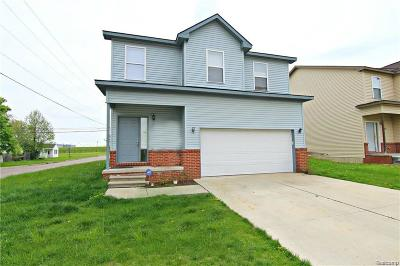 Pontiac Single Family Home For Sale: 355 2nd Ave