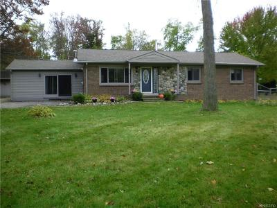 Lake Orion Single Family Home For Sale: 510 Grampian Ave