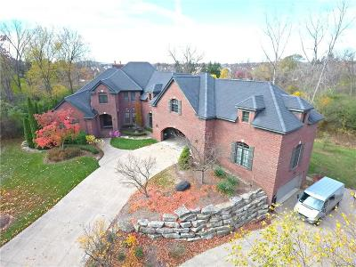 Northville Single Family Home For Sale: 18151 Laurel Springs Crt