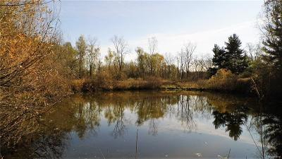 Lapeer Residential Lots & Land For Sale: 271 S Mapleleaf Rd