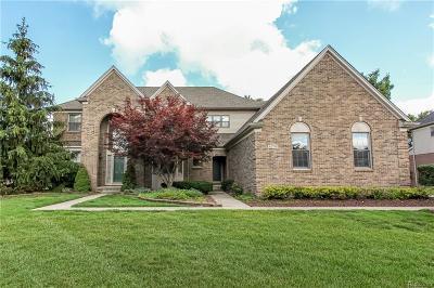 Canton Single Family Home For Sale: 47790 Pavillon Rd