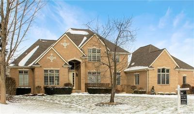 Macomb Single Family Home For Sale: 8015 Grand Oaks Crt