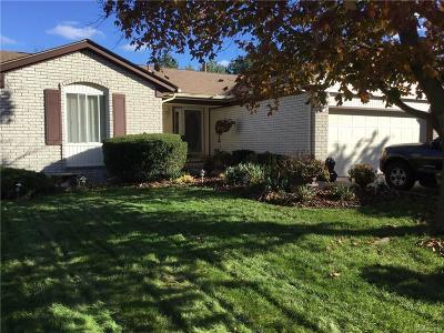 Clinton Township Single Family Home For Sale: 41960 Mary Kay Dr