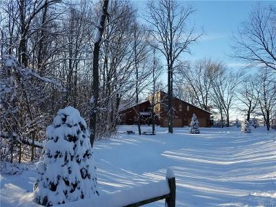 Oakland Twp Single Family Home For Sale: 747 W Buell Rd