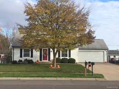 Lapeer Single Family Home For Sale: 765 Metcalf Dr
