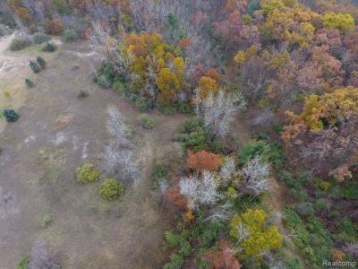 Lapeer Residential Lots & Land For Sale: Fish Lake Rd