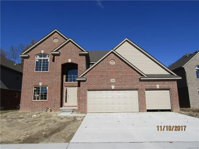 Macomb Single Family Home For Sale: 22169 Sandalwood Dr