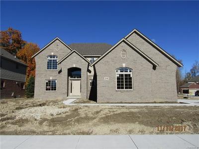 Macomb Single Family Home For Sale: 22191 Sandalwood Dr