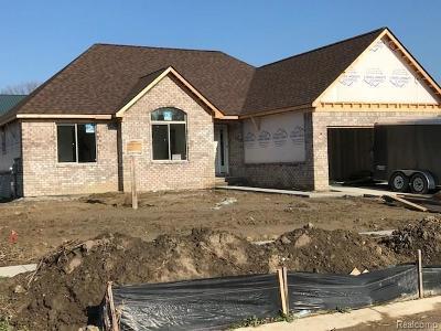Macomb Single Family Home For Sale: 23177 Merlene