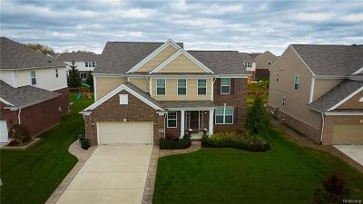 Macomb Single Family Home For Sale: 15817 Diamante Dr