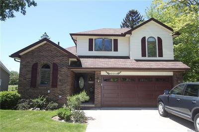 Macomb Single Family Home For Sale: 45343 Deneweth Rd