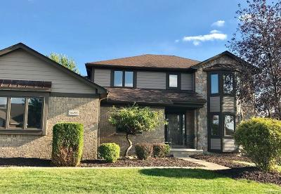 Macomb Single Family Home For Sale: 54498 Myrica Dr