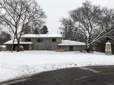 Bloomfield Hills Single Family Home For Sale: 4714 Pickering Rd
