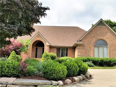 Northville Single Family Home For Sale: 907 Coldspring Dr