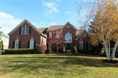 Northville Single Family Home For Sale: 15714 Spyglass Dr