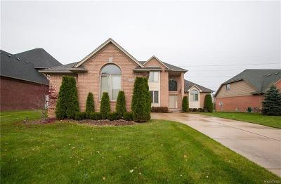Macomb Single Family Home For Sale: 13319 Windham Dr