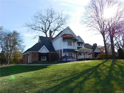 Macomb Single Family Home For Sale: 8766 Shelby Woods Dr