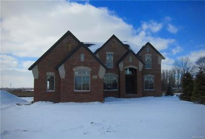 Shelby Twp Single Family Home For Sale: 54965 Black Hills Ln