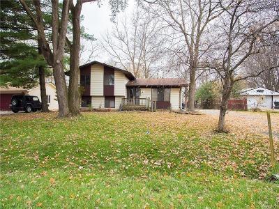 Oakland Single Family Home For Sale: 2133 Mattie Lu Dr