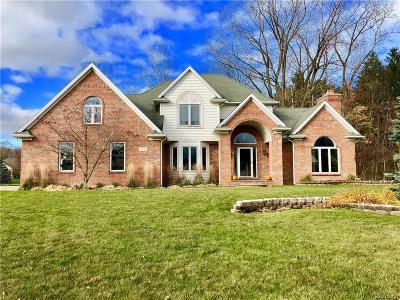 Saint Clair Single Family Home For Sale: 619 East Crt