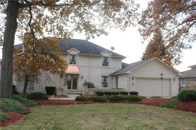 Rochester Hills Single Family Home For Sale: 1937 N Kilburn Rd N