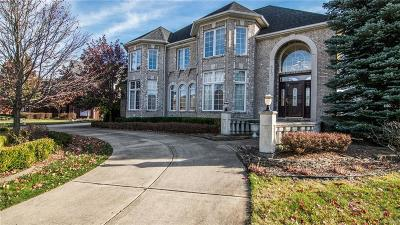 Rochester Hills Single Family Home For Sale: 675 Majestic Dr