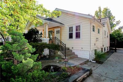 Ferndale Single Family Home For Sale: 474 E Hazelhurst St