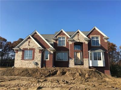 Clarkston Single Family Home For Sale: 8935 S Stonewall W