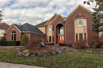 Canton Single Family Home For Sale: 48772 Wildrose Dr