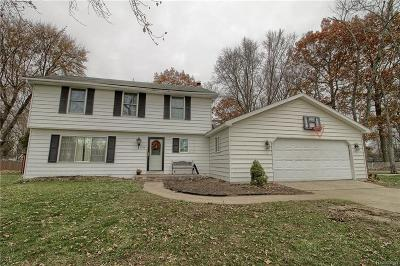 Fort Gratiot Single Family Home For Sale: 3208 N Shoreview Dr