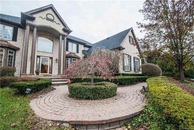 Northville Single Family Home For Sale: 48641 Stoneridge Dr
