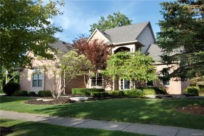 Clarkston Single Family Home For Sale: 6627 Ridgewood Crt