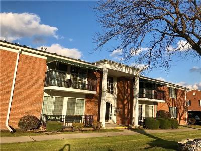 Saint Clair Shores Condo/Townhouse For Sale: 1028 Woodbridge St