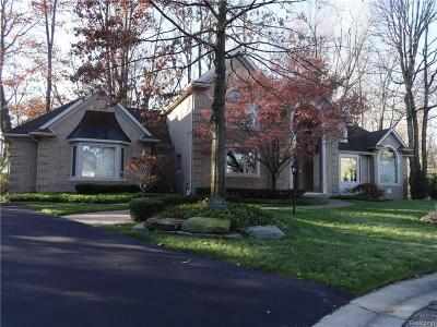 Rochester Hills Single Family Home For Sale: 3740 Walnut Brook Dr
