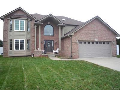 Macomb Single Family Home For Sale: 20150 Navaho